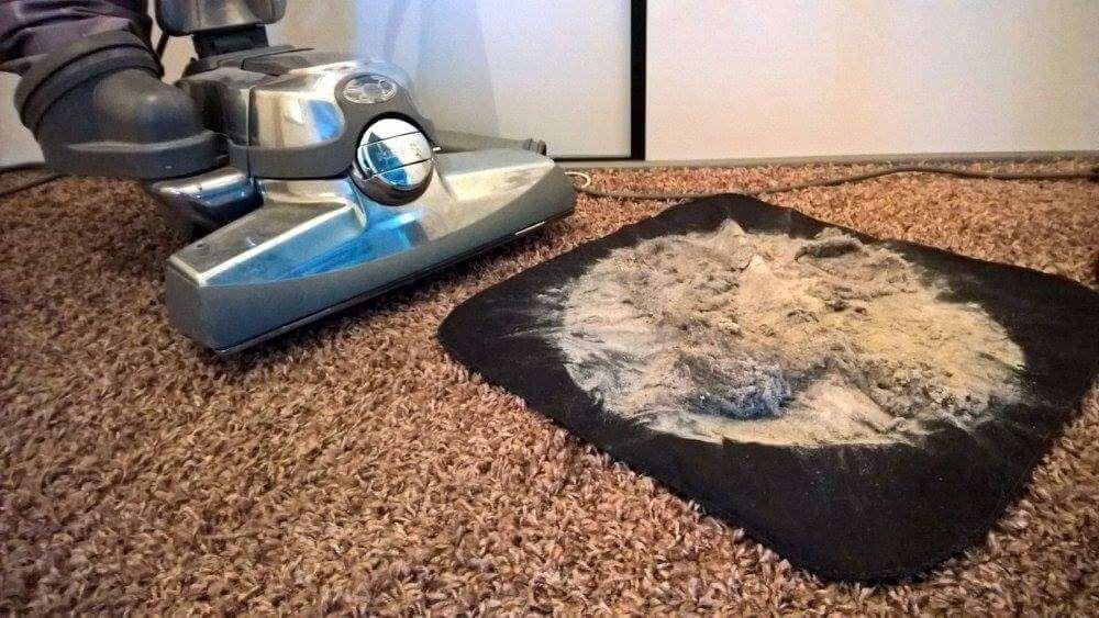 Matras Allergie Huisstofmijt : Huisstofmijt allergie huisstofmijt in matras meubels reinigen